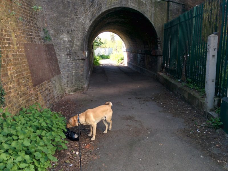 Bexley Tunnel
