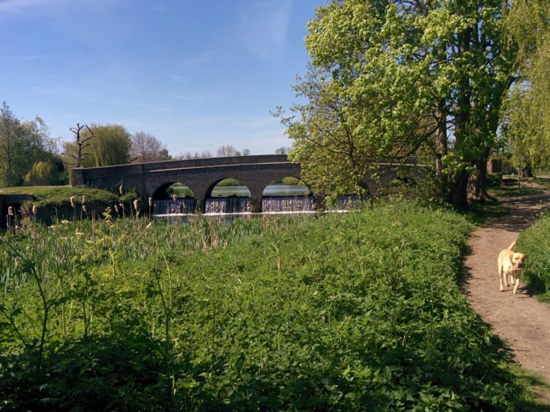 Footscray Meadows - Five Arches Bridge