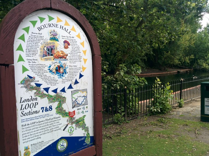 Ewell - London Loop Board