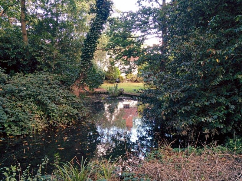 pinnerwood-house-pond