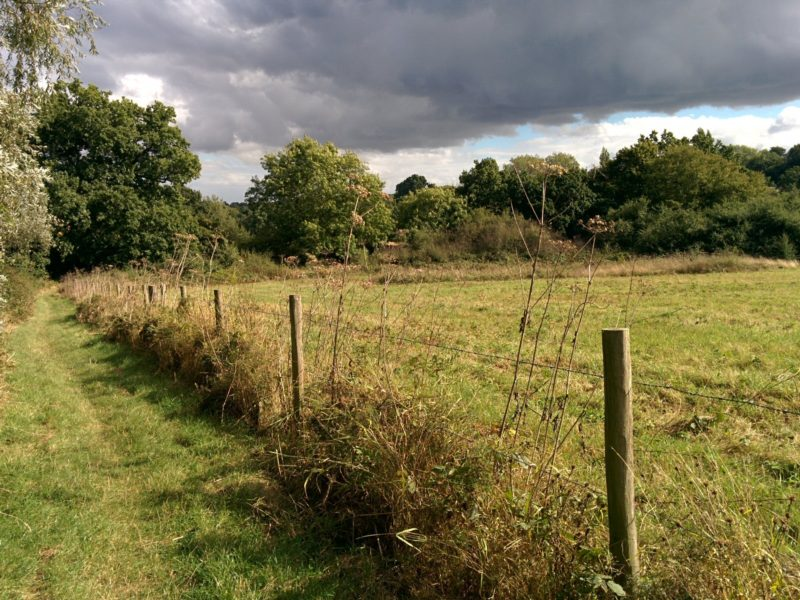 1609-488-london-loop-16-totteridge-fields
